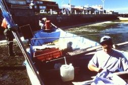 Pesca15