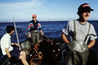 Pesca21