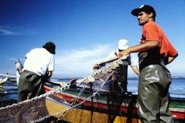 Pesca22