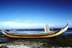 Pesca25